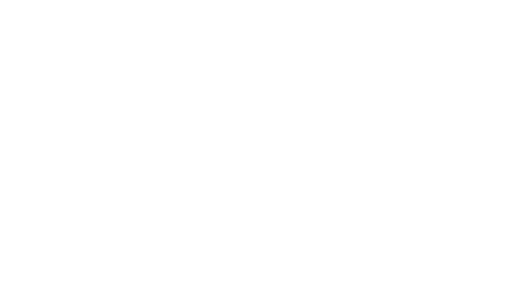 FZWF logo białe